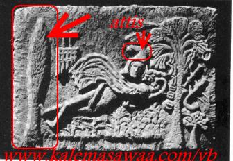 الأصول الوثنية للمسيحية شجرة الميلاد شجرة الصنوبر)