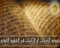 تعدد الزوجات ام تعدد الزانيات في العهد القديم - محمود داود