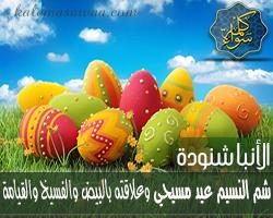 الأنبا شنودة : شم النسيم عيد مسيحي وعلاقته بالبيض والفسيخ والقيامة